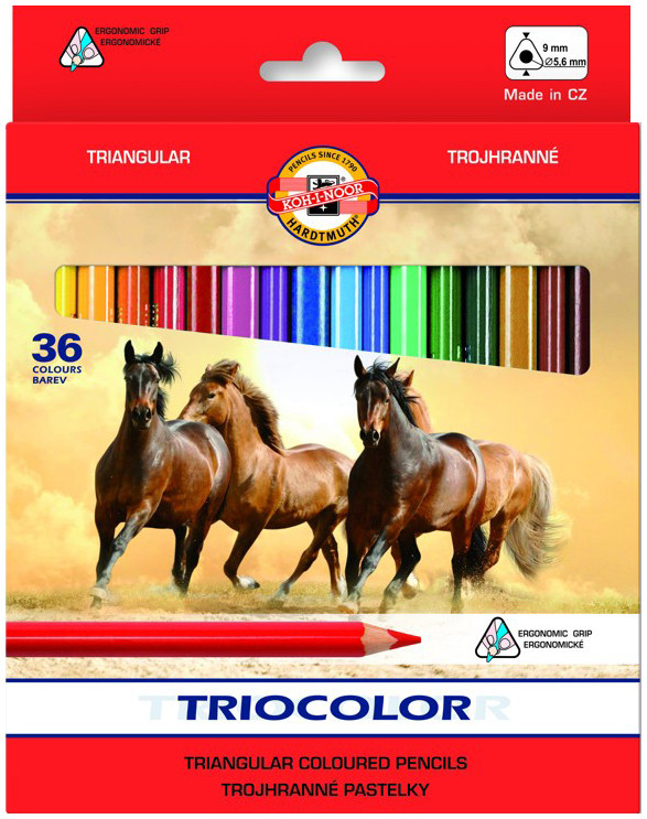 Koh-I-Noor 3145 Jumbo Triangular Coloured Pencils - Assorted Colours (Pack of 36)