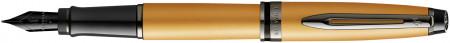 Waterman Expert Fountain Pen - Gold Ruthenium Trim
